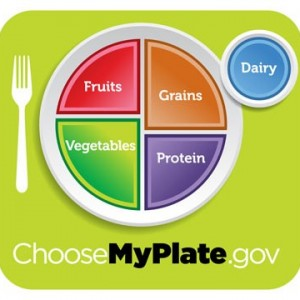 The U.S. government's new food plate emphasizes vegetables, fruits, whole grains, and lean meats.