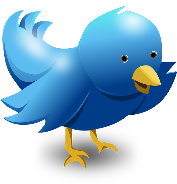 Twitter hashtags for freelance writers: all the most common hashtags for sharing info about freelance writing; also useful for book authors.